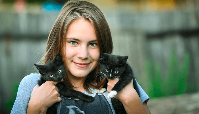 К чему снятся маленькие котята? Толкование снов о котятах по всем сонникам