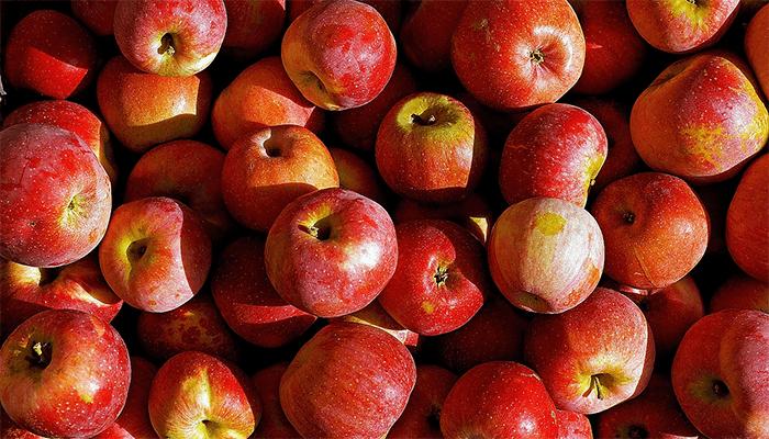 К чему снятся красные яблоки? Толкование сна с красным яблоком по сонникам