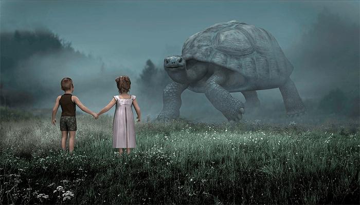 К чему снятся черепахи? Толкование сна с черепахой по сонникам