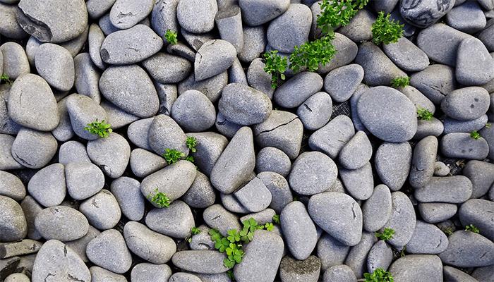 Сонник: что предвещают сны, в которых в вас кидают камни?