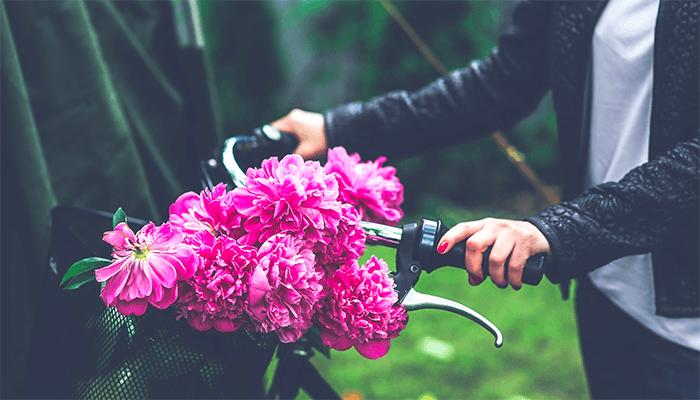 Велосипед сонник значение