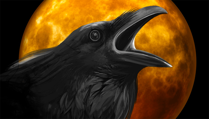 К чему сняться сновидения с вороном или черной вороной