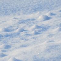 снится-снег-во-сне