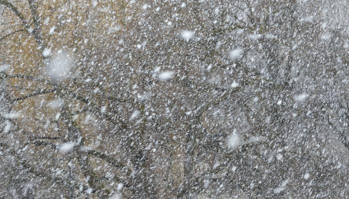 увидеть-снег-во-сне
