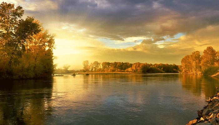 Река во сне - что означает сновидение?