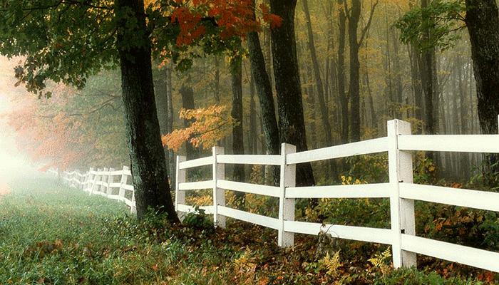 К чему снится забор — к счастью или проблемам?
