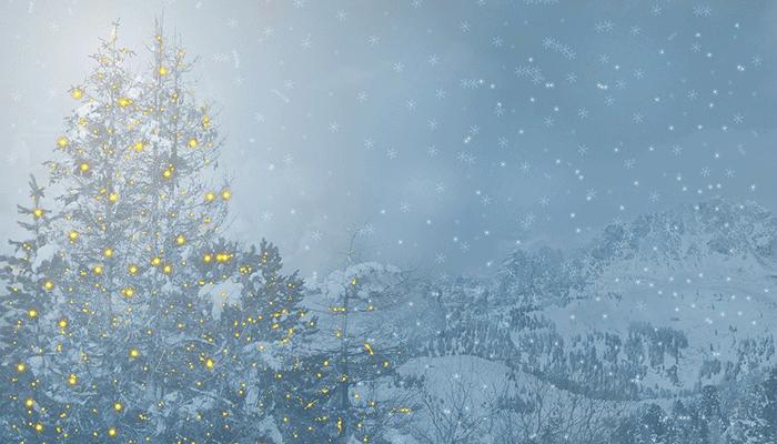 Что означает, когда снится елка