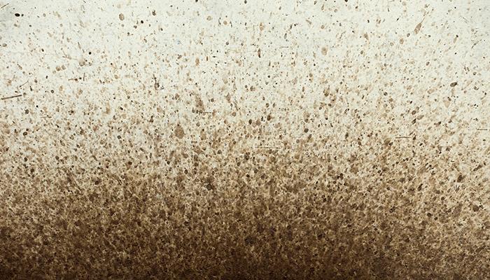 К чему снится грязь: толкование сна с учетом деталей