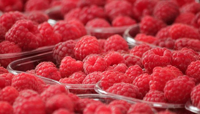 Что говорят сонники о ягоде-малине? Толкование сна