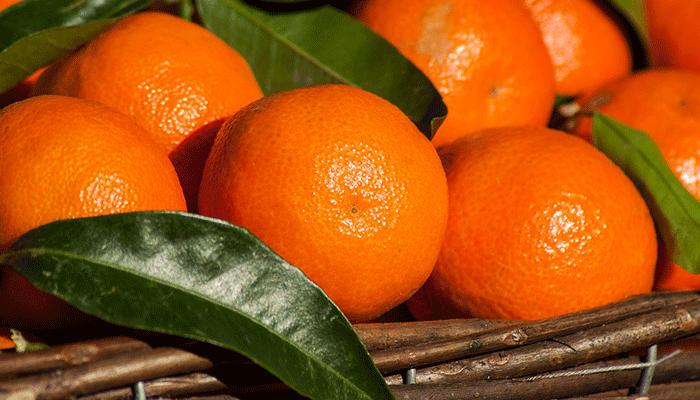 Оранжевый солнечный сон