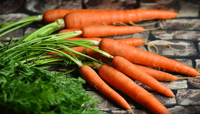 Приснилась морковь – ждите сватов, или к чему снится морковка