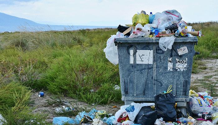 К чему снится мусор - толкование по популярным сонникам