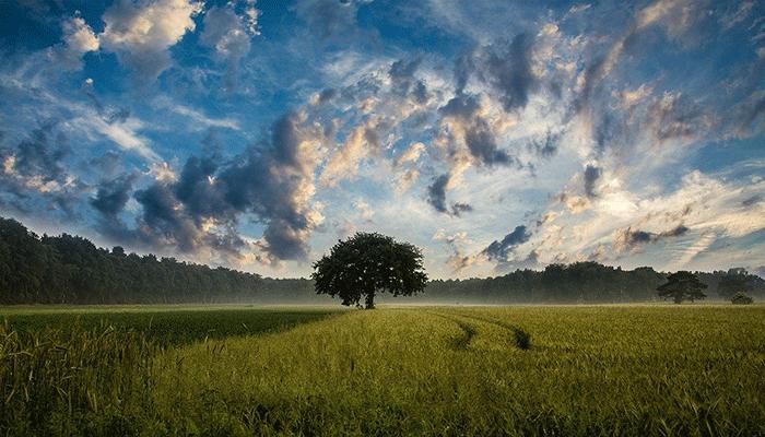 Что расскажет сон про небо — толкование по популярным сонникам