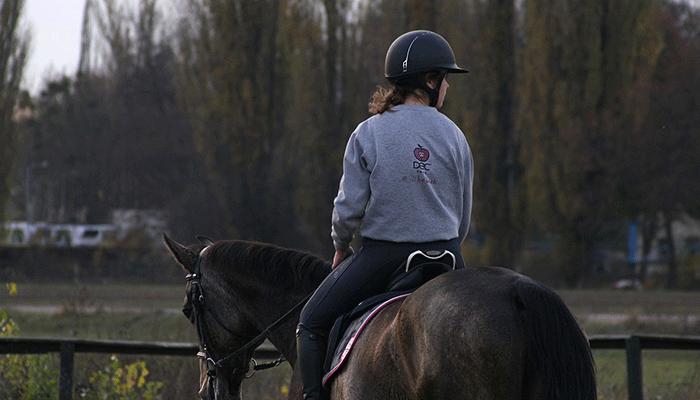 Езда верхом на лошади: толкование сна