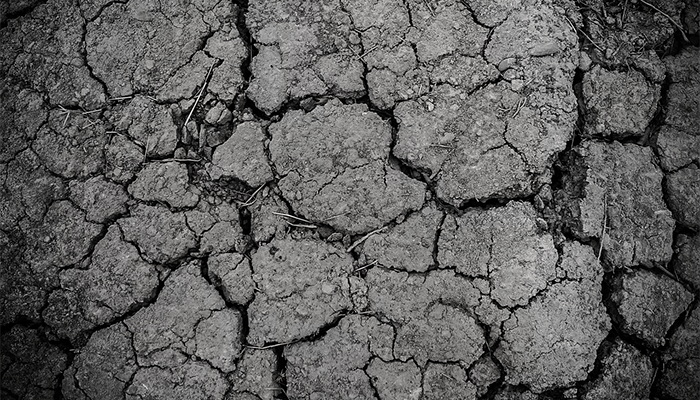 К чему снится земля? Мнение толкователей